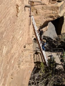 Cliff dwelling ladder